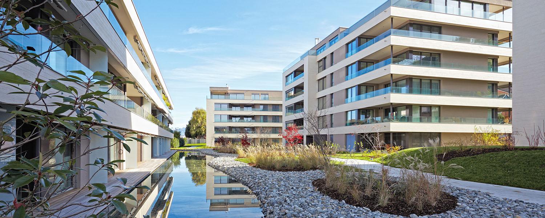 Quartier moderne avec décorations organiques et végétalisées au sol ainsi qu'un plan d'eau