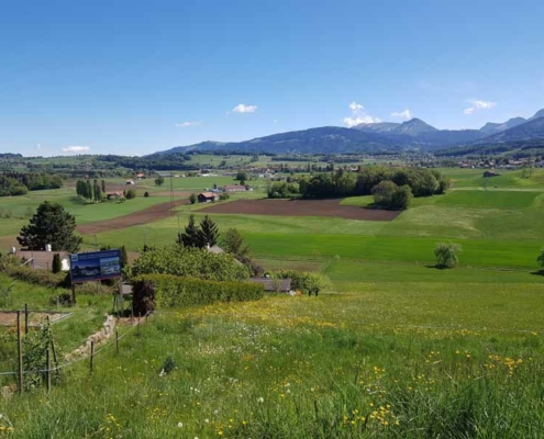 Zone de campagne avec prairie en avant plan, champ au centre et décor de montagnes en fond