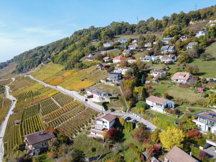 vue depuis un drone sur le lavaux, les vignes et quelques habitations
